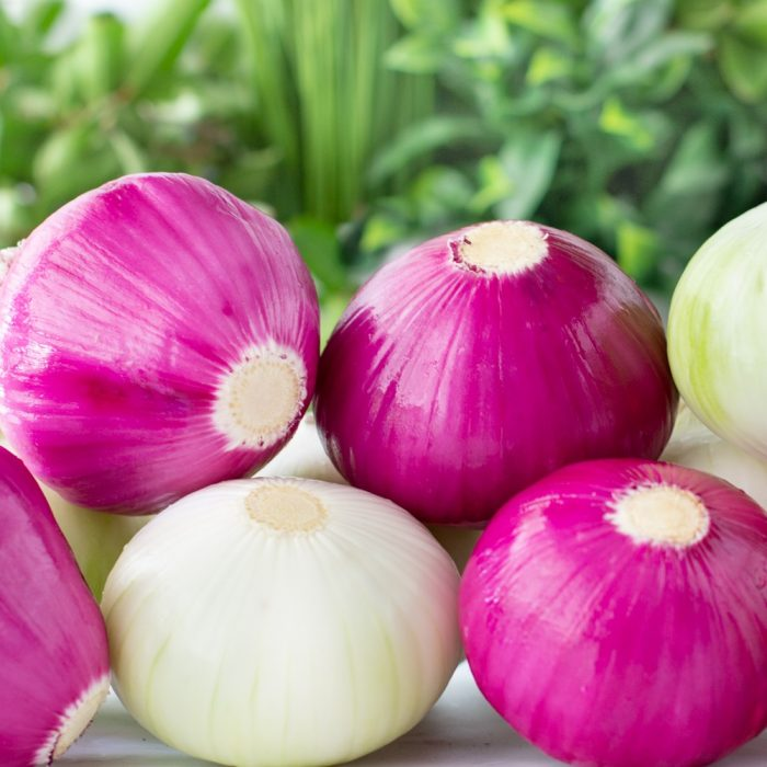 close up of pile of red and white onions with green foliage background