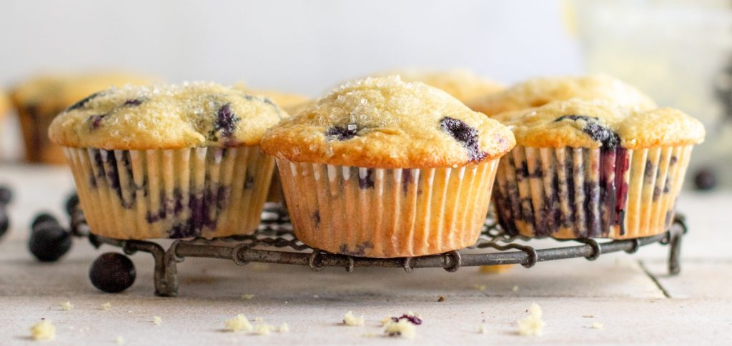 close up of gluten-free blueberry muffins on wire rack. Blueberries scattered on left. White background.