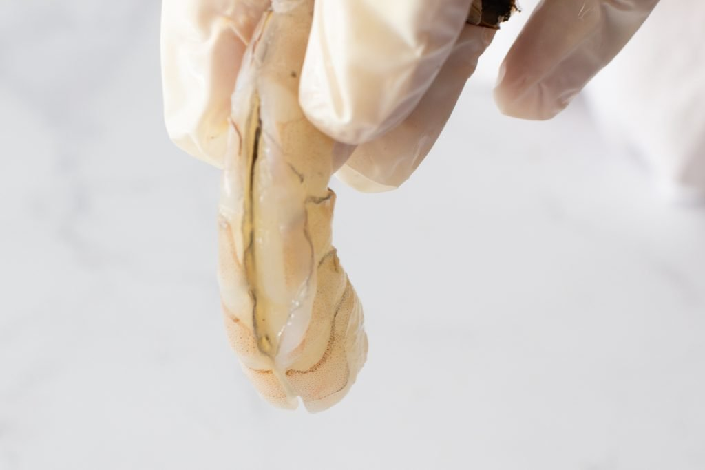 close-up of peeled raw shrimp