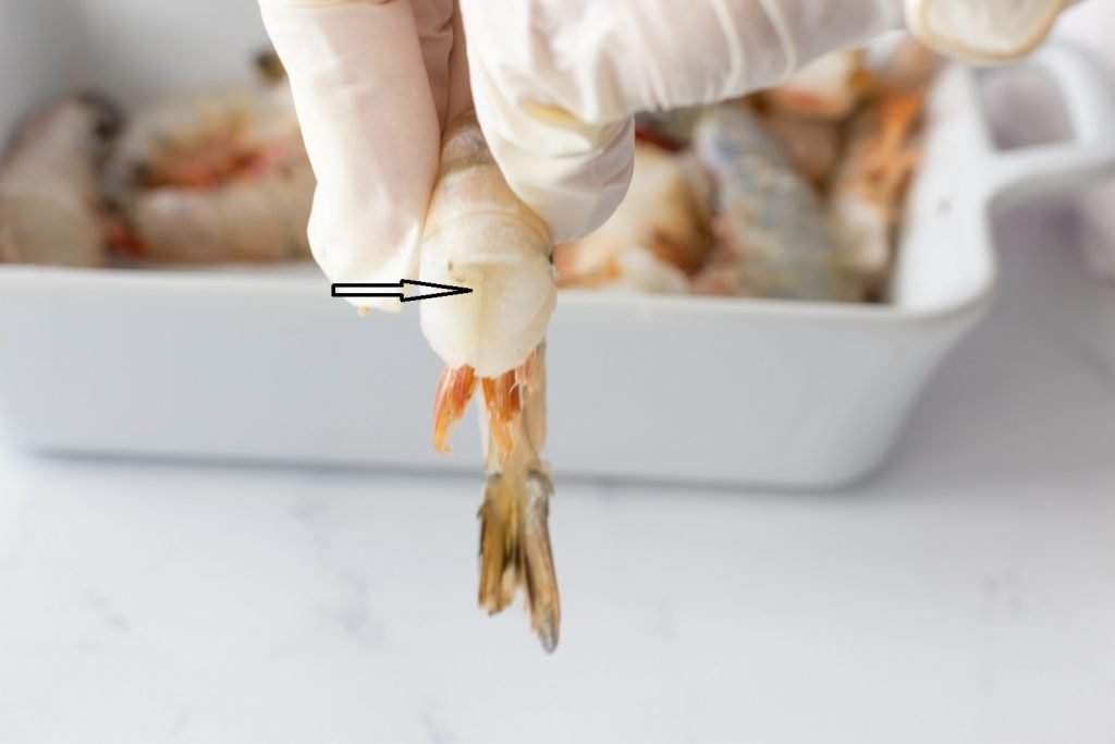 Close up of fingers holding raw shrimp with shell on. Arrow pointing to slit where scissors will cut.