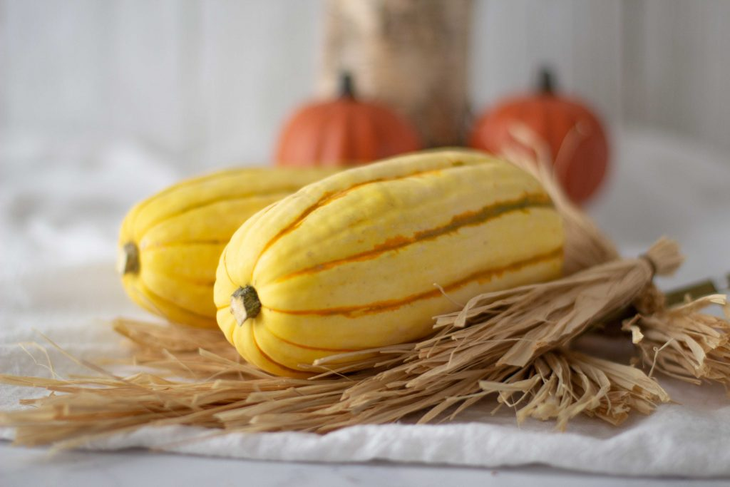 Close up of 2 whole delicata squash on bed of straw. Small pumpkins in back. White background.